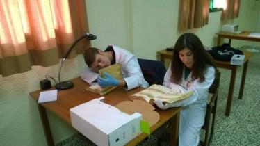 Practicum curso 2013-2014 10